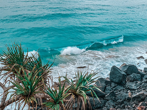Ocean Break
