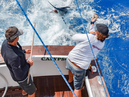 Discover The Deep Sea With Calypso Fishing Adventures!