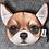 Thumbnail: Monederos caritas perros y gatos