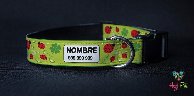 Collar Natural N013