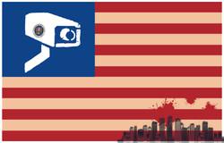United StatesofNSI-01.jpg