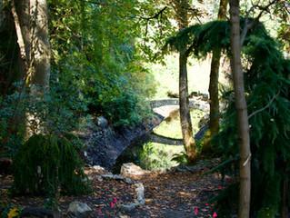 Dry-Stack Stonework, Victoria B.C.
