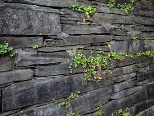 3 Benefits Of ADry Stone Retaining Wall