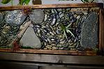 Stone Art, Lennox Masonry, Victoria BC.j