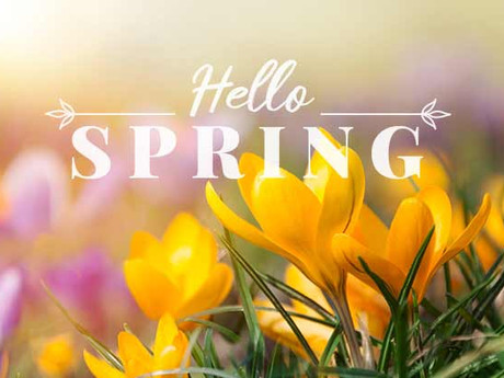 Spring Checklist - Updated!