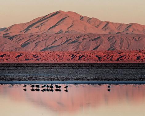 Altiplano, Şili