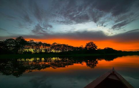 Amazon Ormanları, Brezilya