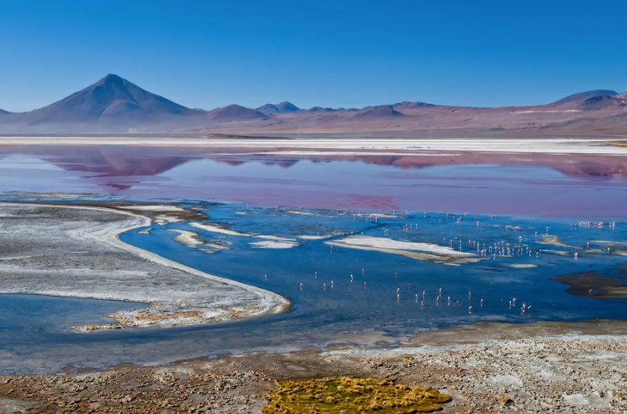 Altiplano, Kırmızı Göl, Bolivya