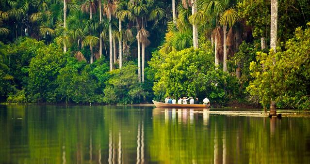 Rio ve Amazon