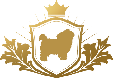 logo%20realmaltes_edited.png