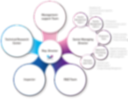 No. 1 Quality Air Compression Massager Brand, ALANCE's Organization Chart