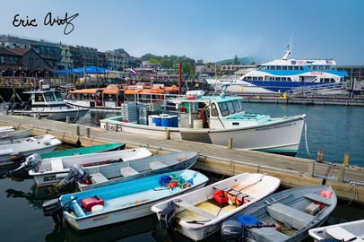The Harbor at Bar Harbor