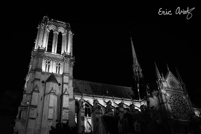 Notre-Dame de Paris Landscape