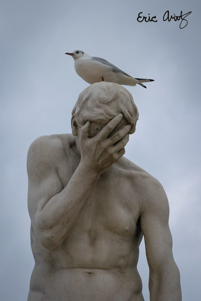 A bird perches on a statue outside the Louvre in Paris