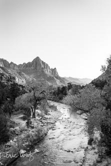Zion National Park Portrait