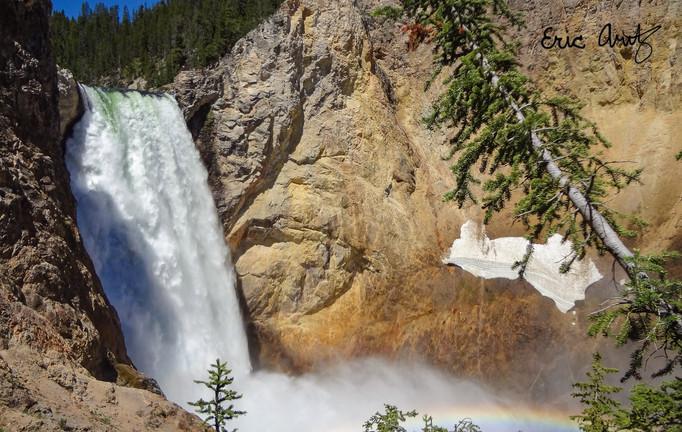 Lower Falls Landscape, Yellowstone
