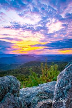 Sunset Portrait, Shenandoah