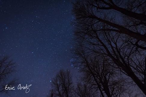 Star-Filled Sky, North Hero