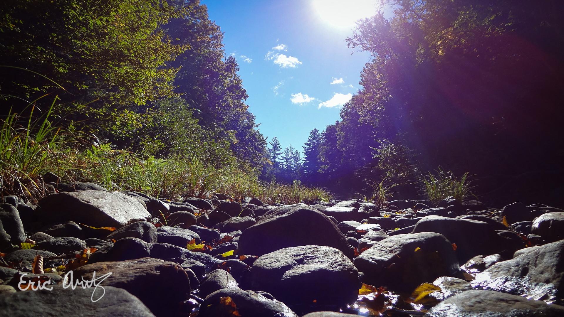 Stream Bed at Midday, Adirondacks
