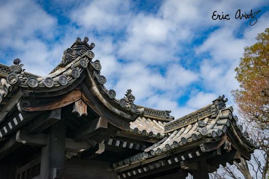 Shrine Roof, Kyoto