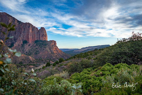 Kolob Canyons Forest