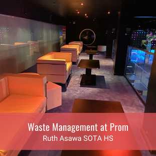 Waste Management at Prom