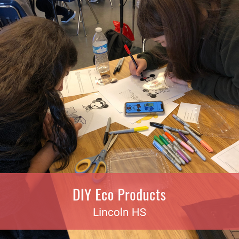 DIY Eco Products
