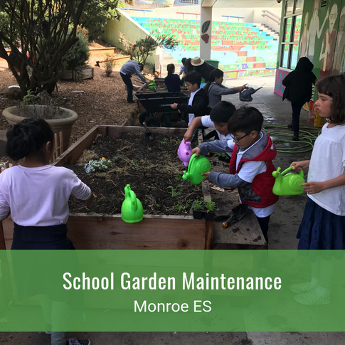 School Garden Maintenance