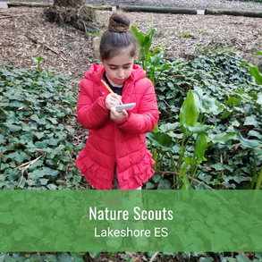 Nature Scouts