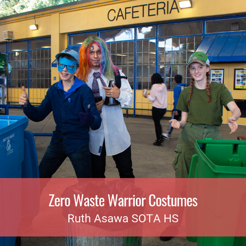 Zero Waste Warrior Costumes