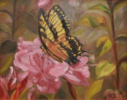 Spring Flutter and Bloom