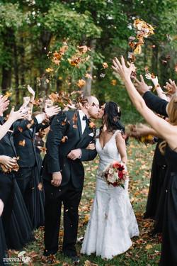 pro wed 3