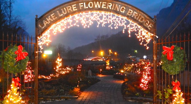 Flowering-Bridge-Christmas-Lights