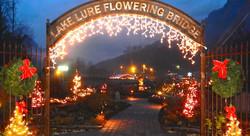 Flowering-Bridge-Christmas-Lights