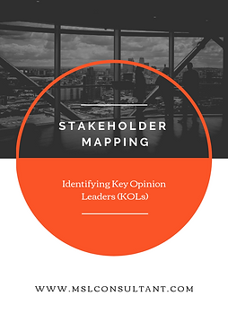 STAKEHOLDER MAPPING.PNG