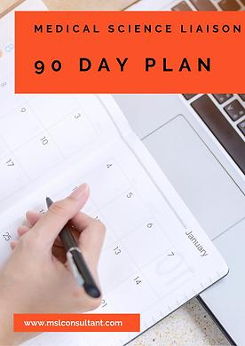 90 day plan image.png