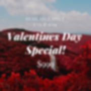 Valentines day special w_ dets.png