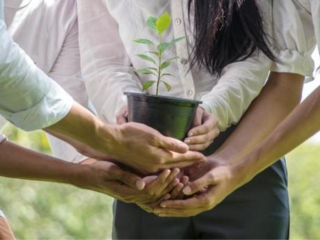 La RSE, vecteur d'attractivité et d'engagement pour les collaborateurs
