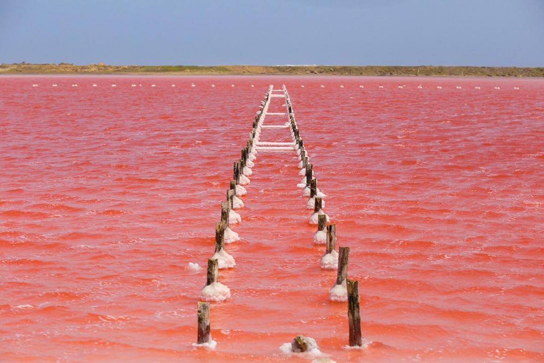 Salinas-de-Galerazamba-mar-rosado-en-col