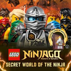 12 Dynamo Lego Ninjago_THUMB