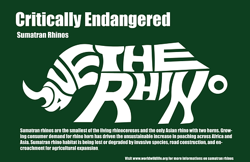 Rhino Final.png