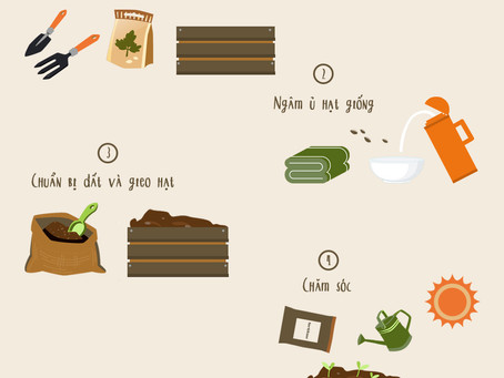 How to go fresh with homemade vegetables