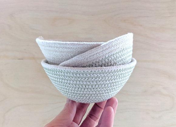 Set of Three Small Paperwhites