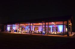 Wedding-Blue-Uplighting-_-P