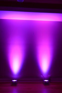 Purple(1)