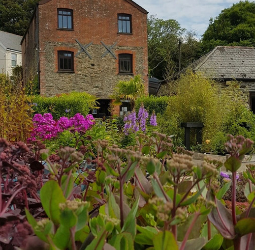 Avon Mill Garden Centre cafe in the old mill house