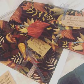 Lucy Rose velvet swatches, South Milton illustrator