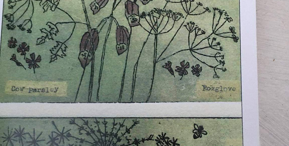 Hedgerow Notebook