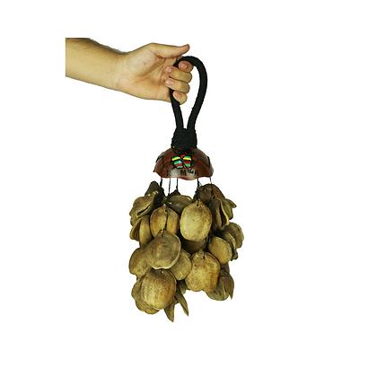 Molho de Sementes Planta Carnívora - Luxo Series