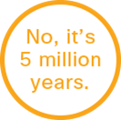 no_5_million_years_132x132.png